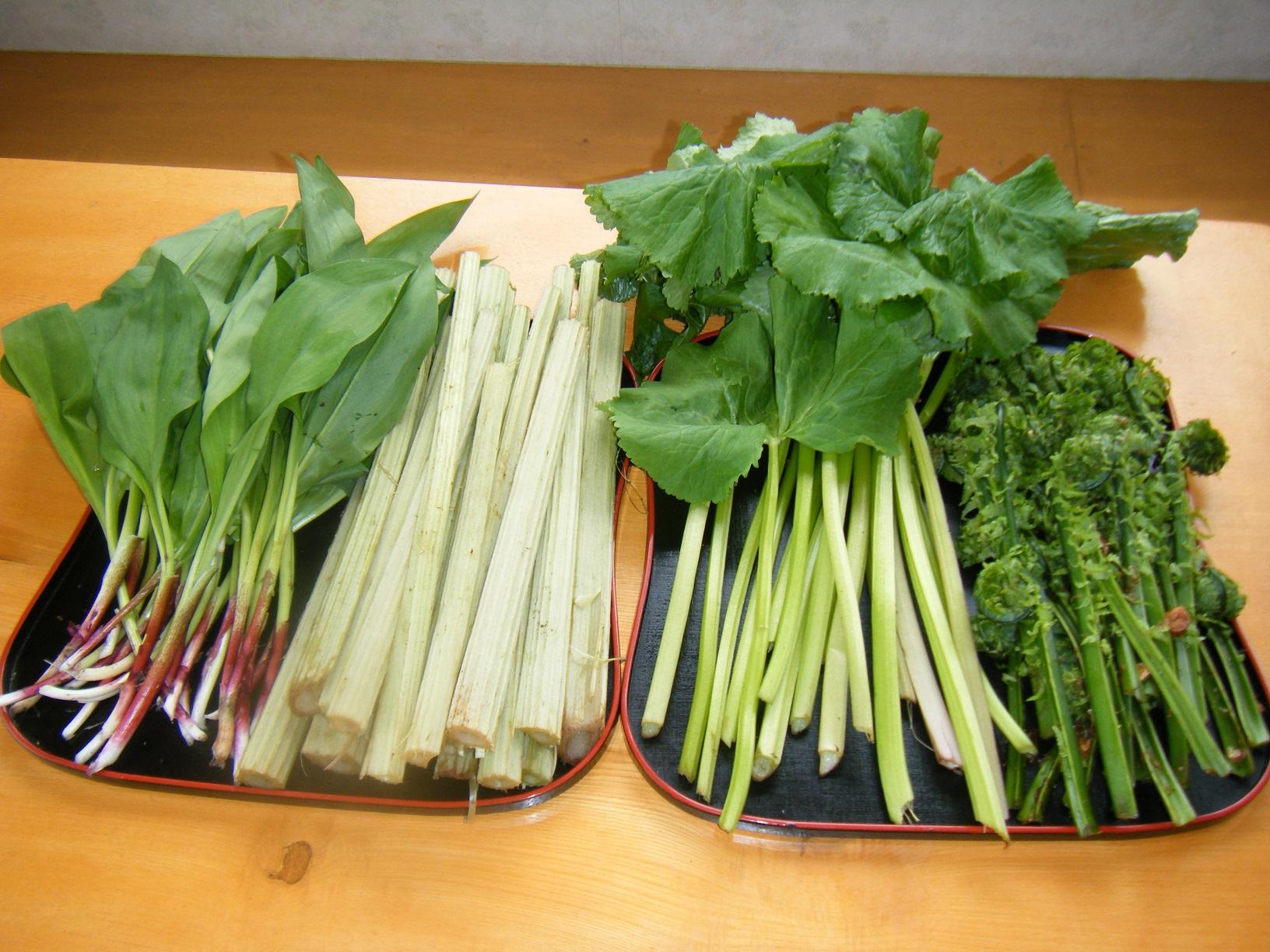 地場の山菜(ギョウジャニンニク・フキ・コゴミ)